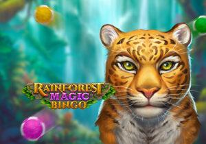 Rainforest Magic Bingo+通博+PNG+老虎機